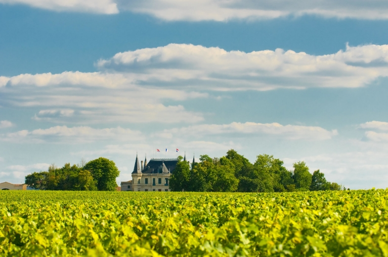 Chateau and vineyard in Margaux, Bordeaux