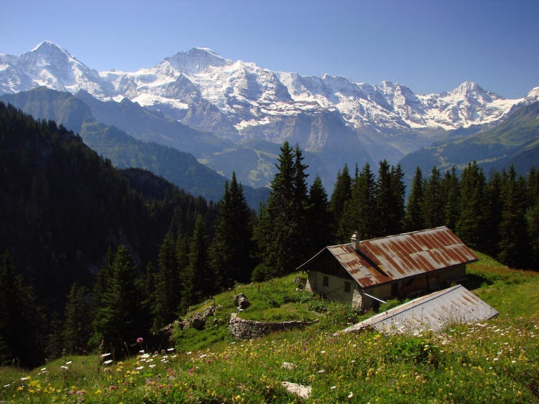 View on the Alps, Switzerland